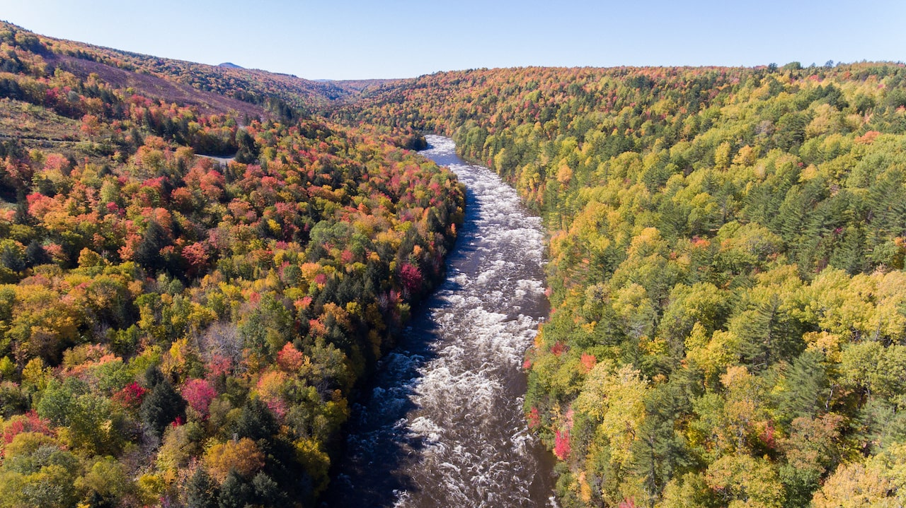 Fall rafting on the Dead River