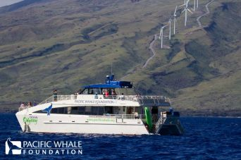 Pacific Whale Foundation
