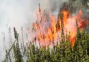 Wildfire season has started in Alberta