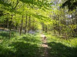 Rogation walk-5050091