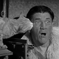Biography of Shemp Howard