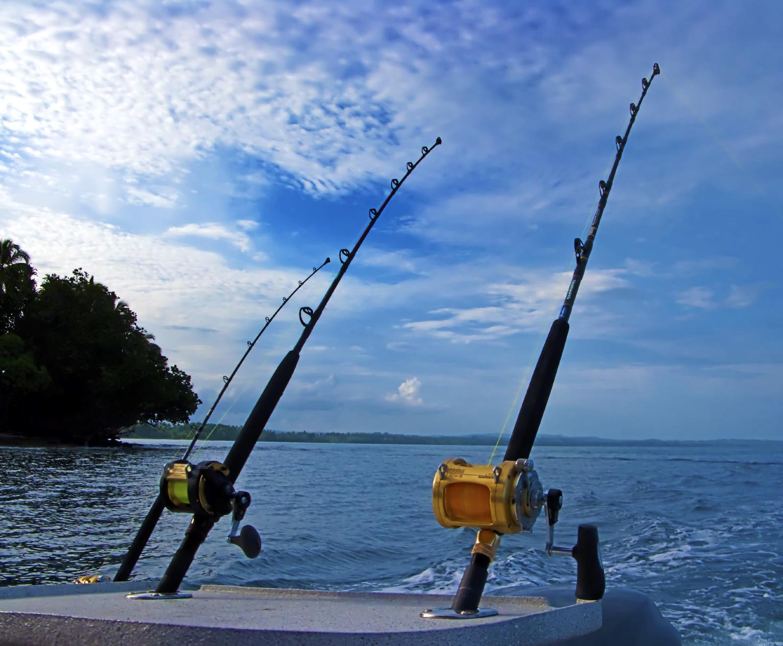 Fishing rod types outdoor tips for Types of fishing poles