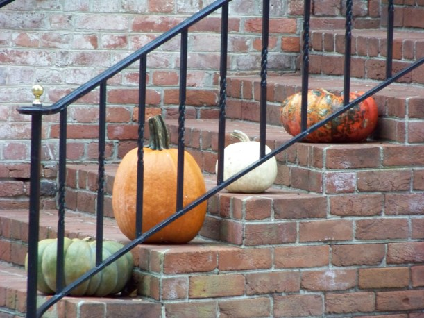 Gourd Steps Photo by Mike Hartley