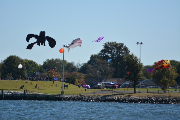Kites on a Sunday Photo by Mike Hartley