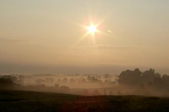 Sunrise burning the morning fog. Photo by Mike Hartley