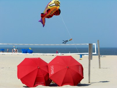Always something flying at the beach. Photo by Mike Hartley
