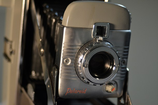 Old Polaroid Land Camera model 80 Photo by Mike Hartley