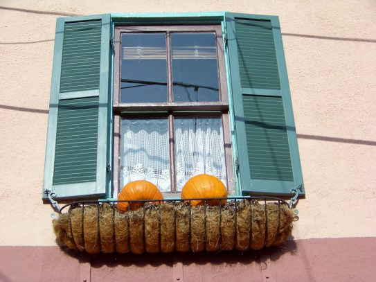 Gourdes in the window. Photo by Mike Hartley