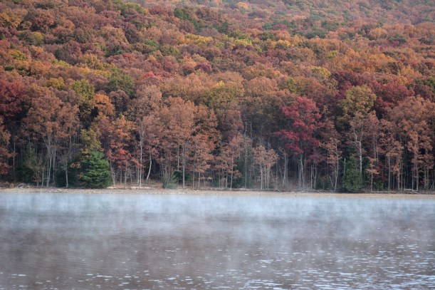 Some morning vapor off the lake.  Photo by Mike Hartley