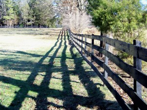 Fence post shadow along Manor Lane. Photo by Mike Hartley