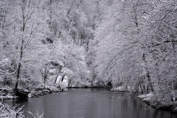 Patapsco River Photo by Mike Hartley