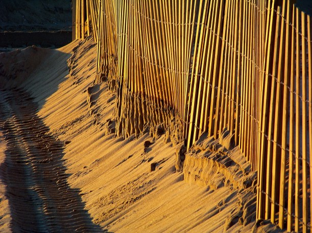 Lines in the sand. Photo by Mike Hartley