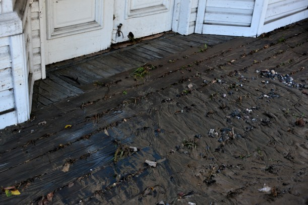 Please don't track mud in the house. Oh never mind. Photo by Mike Hartley