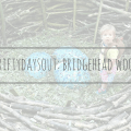 bridgehead woodland walk