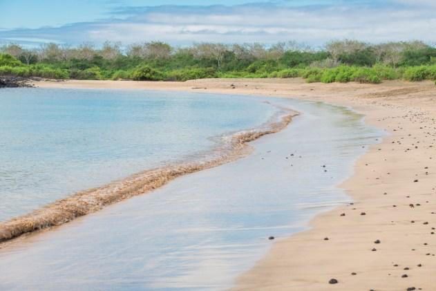 Post Office Bay Galapagos Beach