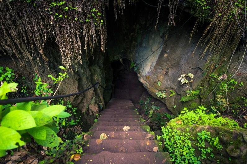 galapagos lava tunnel 2