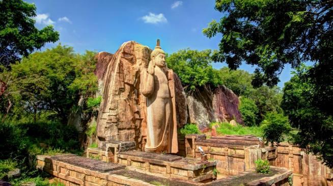 Avukana giant Buddha