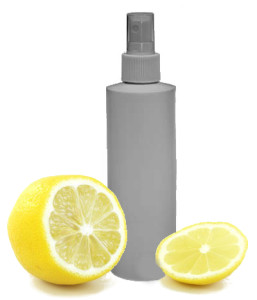spray bottle lemon cleaner thrifty sustainable cheap save money clean