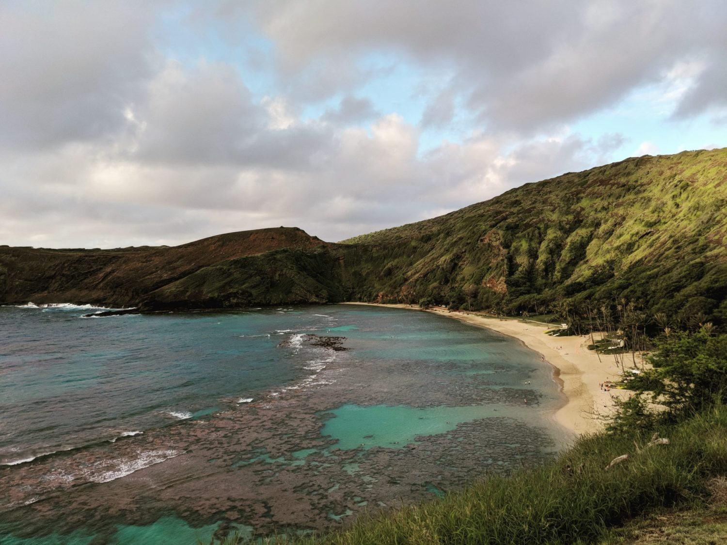 Hanauma Bay Thrifty Traveler