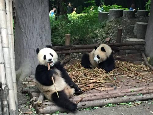 china bucket list
