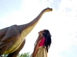 Dinosaur_20130409153817_320_240