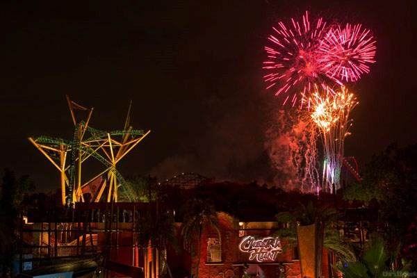 Cheetah Hunt Fireworks