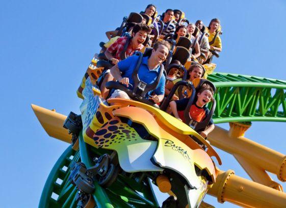 Cheetah Hunt at Busch Gardens_hori