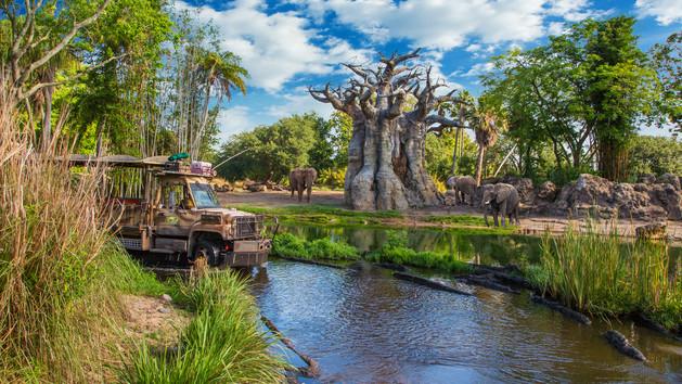 kilimanjaro-safaris-00