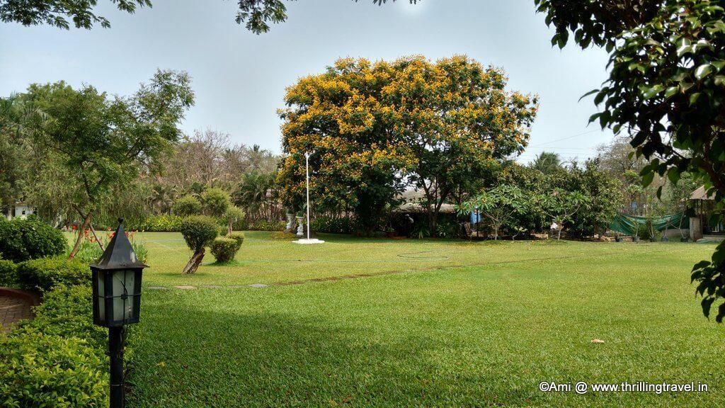 U Tropicana Resort, Alibaug