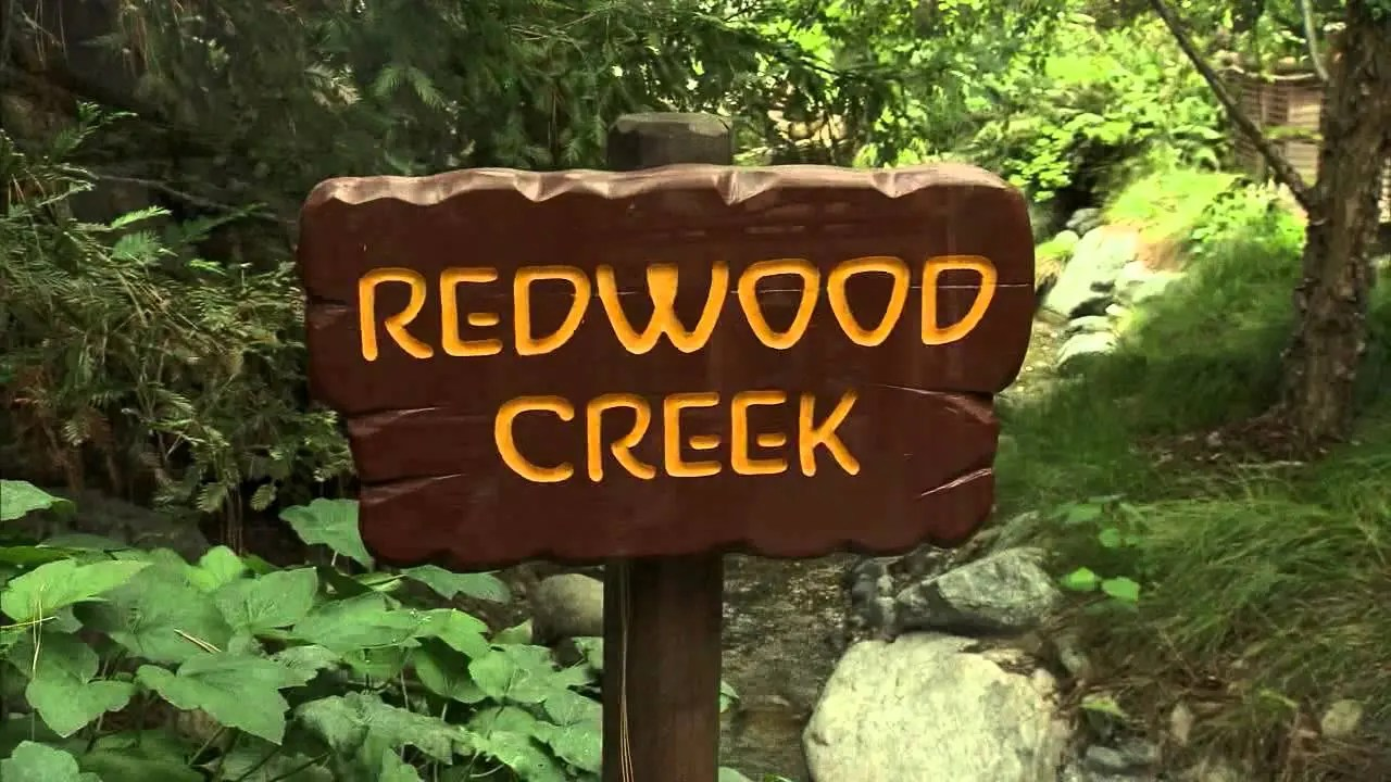 It's an Endless Summer at Redwood Creek Challenge Trail | Disney California Adventure Park