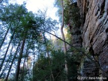 Tourist Trap (5.9) - Torrent Falls, Red River Gorge, KY