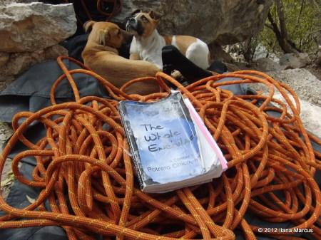 EPC Climbing Essentials