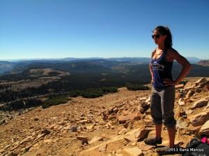 Summit of Bald Mountain - Thrillseekers Anonymous