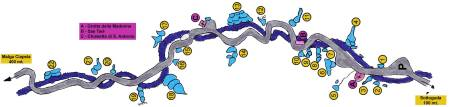 Serrai di Sottoguda Ice Climbing Topo Guide