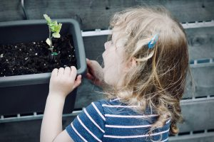 girl marvelling at a seedling in a planter