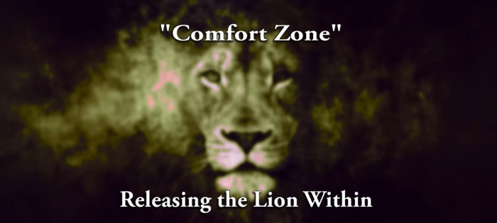 Releasing Lion Within   Comfort Zone