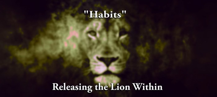 Releasing Lion Within   Habits