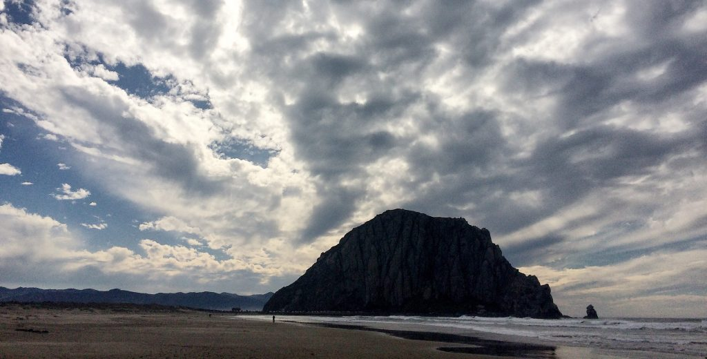 Nature Therapy in Morro Bay