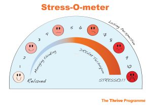 Stressometer-The-Thrive-Programme-900x636