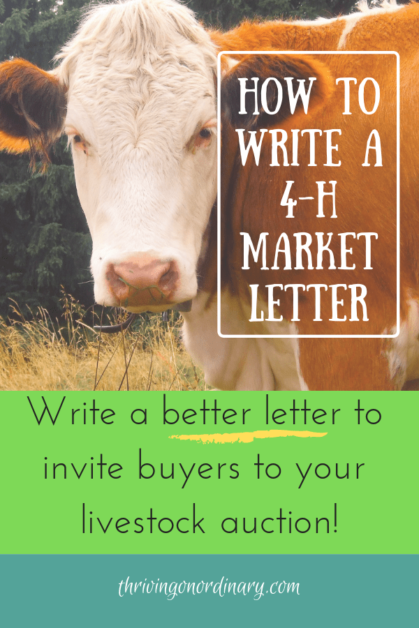 4 h buyer letter template  How to Write a 10-H Buyer Letter - Thriving On Ordinary