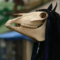 horse square