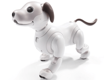 Aibo: Fetch Robot, Good Robot