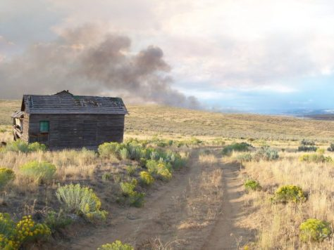 Danger Ahead! A new wild fire gathers power in the desert of northwestern colorado while bowhunting for pronghorn antelope