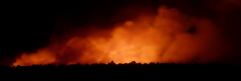 A Long, Scary Night Wild fire in the night