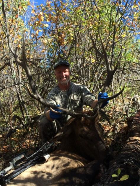 Bull Elk Taken With Archery Tackle in Colorado