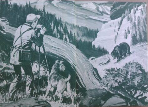 The Endpaper illustrations of a First Edition Copy of Wildlife Cameraman, with Dustjacket, by Jim Kjelgaard. Illustrated by Sam Savitt