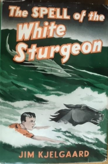 A First Edition Copy of The Spell of The White Sturgeon by Jim Kjelgaard, Showing the Front Panel of the Dustjacket. Art By Stephen Voorhies. From The Book Collection of Michael Patrick McCarty