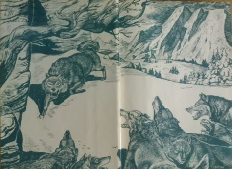 The Endpapers From a First Edition Copy of Sow Dog by Jim Kjelgaard. Illustrated by Jacob Landau