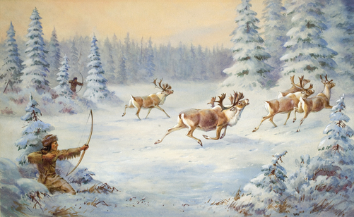 A Woodland Caribou Bull Falls To A Chipewyan Arrow. Painting by Walter A. Weber