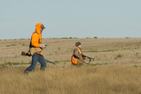 A hunter and a young boy hunt upland game